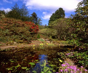 S Airds Hotel Scotland There are several other gardens within driving distance of Airds Hotel ...