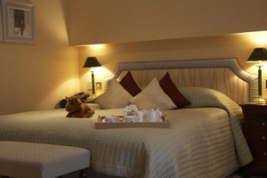 Room in the Airds Hotel - Hebridean Cruise and Stay break