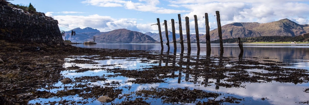 port appin header.jpg